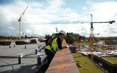 Norges største bygge prosjekt veterinærbygget på Campus Ås